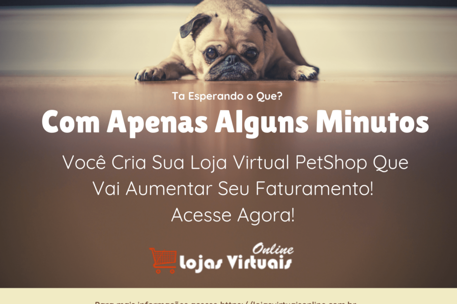Como Montar Um Pet Shop Virtual