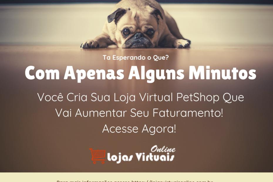 Como Montar Um Pet Shop Virtual